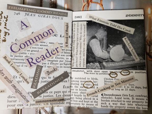 Diogenes Lantern common reader resized 20200825_052007
